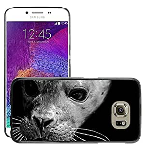 Super Stella Slim PC Hard Case Cover Skin Armor Shell Protection // M00145983 Seal Grey Animal North-Sea // Samsung Galaxy S6 (Not Fits S6 EDGE)