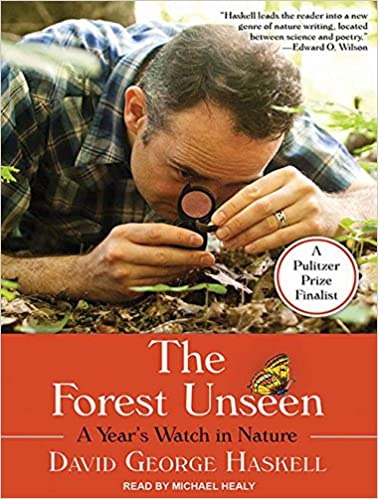 Bittorrent Descargar The Forest Unseen: A Year's Watch In Nature De PDF A Epub