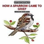 How a Sparrow Came to Grief | Rahul Garg