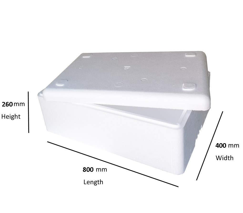 Starlight - Caja de poliestireno (52 L, 25 kg, Aislante, estándar ...