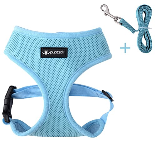 PUPTECK Comfort Pet Dog mesh Harness with Leash - Adjusted Soft Mesh Padded Vest - Best for Walking Blue XL