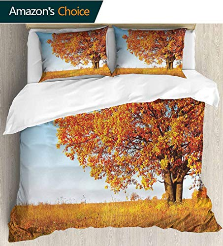 Fall Decor Kids Quilt 3 Piece Bedding Set,Lonely Ancient Oak Tree Grass Bushes Field Serene Rural Scenery with Sham and Decorative 2 Pillows,Full Queen 104