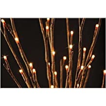 The Light Garden WLWB6020 B Battery Powered Willow Branch Accent, 60 LED  Bulbs By