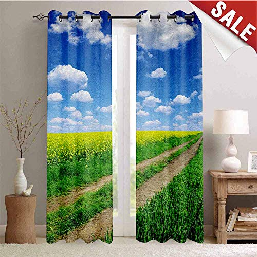 (Flyerer Yellow and Blue, Waterproof Window Curtain, Countryside Road on Field of Rapeseeds into Nature Season Freshness, Room Darkening Wide Curtains, W96 x L108 Inch Green Blue White)
