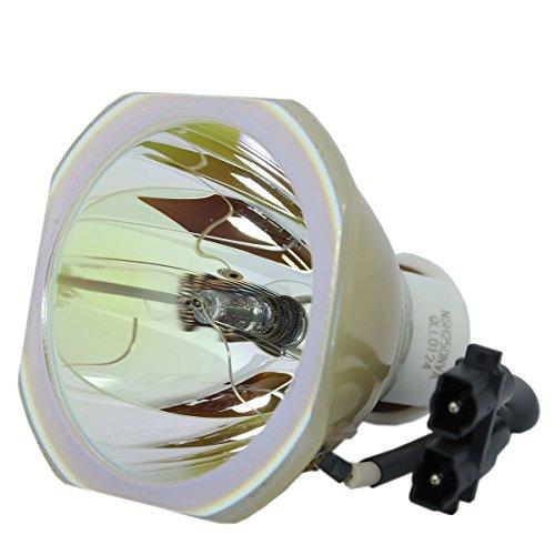 LYTIO Premium for Dukane 456-239 Projector Lamp 456 239 (Original OEM Bulb) ()
