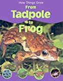 From Tadpole to Frog, Sally Morgan, 1930643853