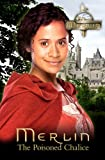 Merlin: The Poisoned Chalice (Merlin (older readers))