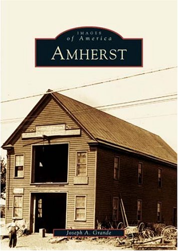 Read Online Amherst (NY) (Images of America) PDF