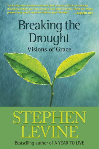 Download Breaking the Drought: Visions of Grace PDF