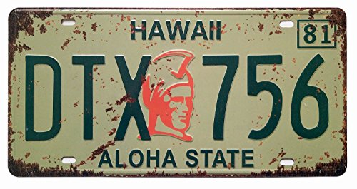State License Plate (ERLOOD Hawaii DTX 756 ALOHA state Retro Vintage Auto License Plate Tin Sign Embossed Tag Size 6 X 12)