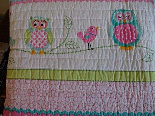 Cynthia Rowley Friendly Owl Owls Pink Bedding 4 Piece Full