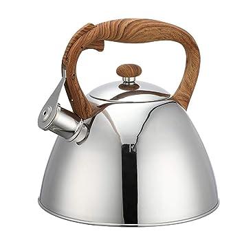 Amazon.com: ZHCSS Tetera cafetera de Acero inoxidable con ...