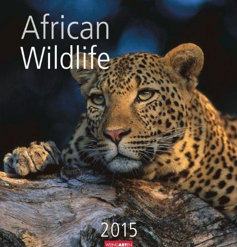 African Wildlife 2015