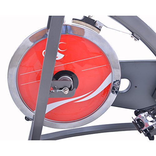 SUNNY SF-B1423C CHAIN DRIVE INDOOR CYCLING BIKE