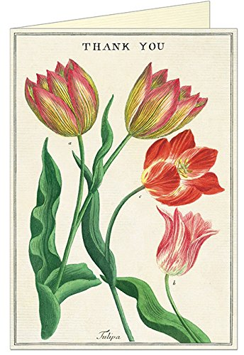 Thank You Tulip Greeting Card with Envelope