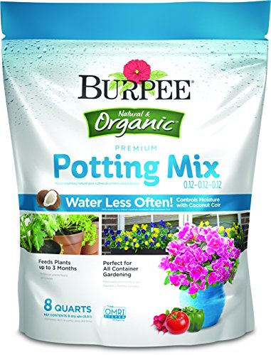 Top 10 Miracle Grow Premium Potting Soil 8Qt