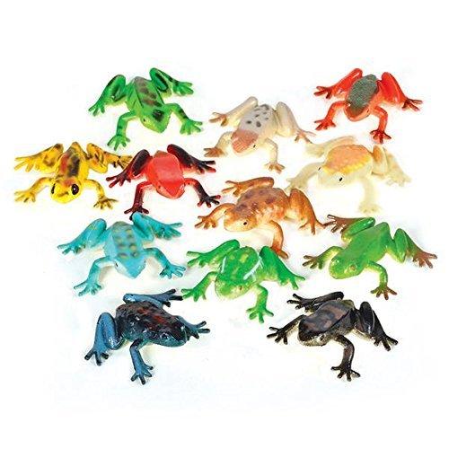 2 Dozen (24) POISON Dart Frogs - Animal 2