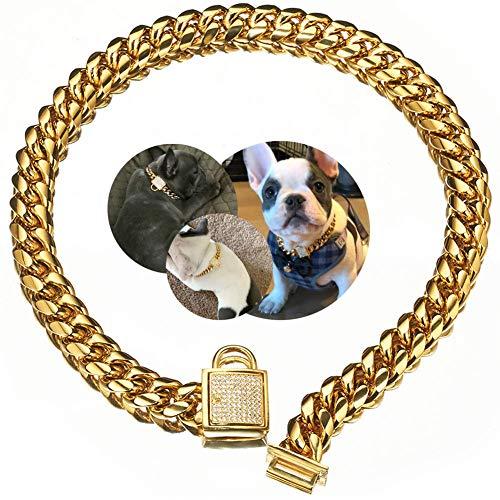 Abaxaca Top Luxury Dog