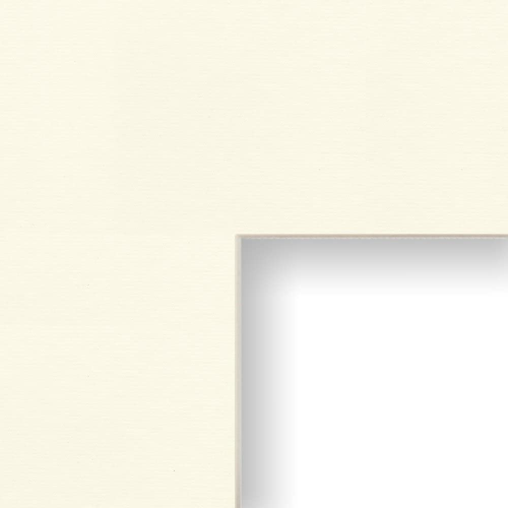 Single Opening for 18x24-Inch Image Craig Frames B461 22x28-Inch Mat Crisp White with Cream Core