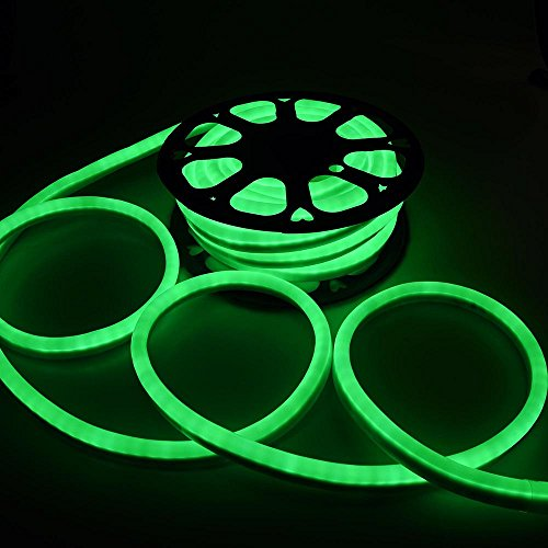 Led Tubes Neon (DELight 50 FT 110V Green Flexible LED Neon Rope Light Indoor Outdoor Holiday Valentines Party Decoration Lighting)