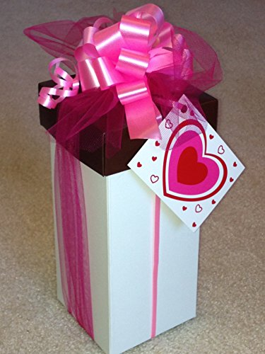 CraveRight Tall Tower of Love Gourmet Cookie Gift Set, Vegan, Gluten and Dairy - Diabetic Cookies Raisin Oatmeal