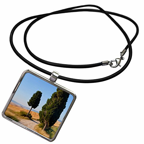 3drose-danita-delimont-italy-winding-road-val-d-orica-tuscany-italy-necklace-with-rectangle-pendant-