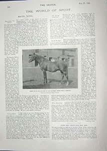 1901 ESCRITOR DE ELLA HEPWORTH DIXON DEL CABALLO EATON PASILLO DE LA CURVA