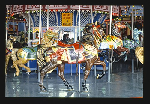 Vintography 16 x 24 Photo of Carousel, Asbury Park, New Jersey 1978 Ready to Frame 28a