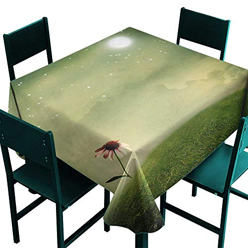 (Warm Family Surrealistic Washable Table Cloth Coneflower in The Field Under Moon Sky Spring Blossoms Graphic Great for Buffet Table W70 x L70)