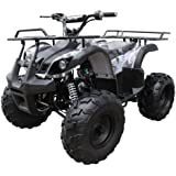 """Coolster 125cc Fully Automatic Mid Size ATV Four Wheeler w/ Large 19"""" Tires - ATV-3125XR8-U - Single cylinder - 4-stroke - Air-cooled by SaferWholeSale"""