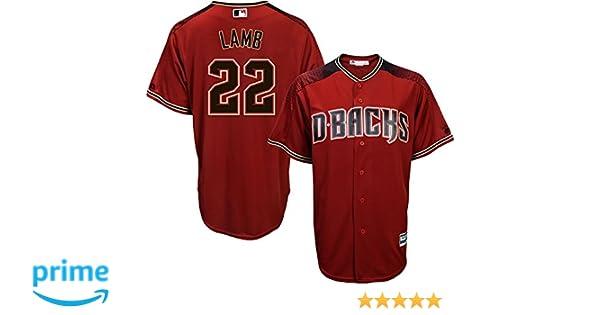 ec6a5d0959f Amazon.com: Jake Lamb Arizona Diamondbacks Red Youth Cool Base Alternate  Replica Jersey: Clothing