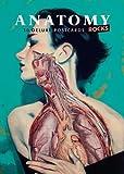 Anatomy Rocks: postcards: A portfolio: 24 plates