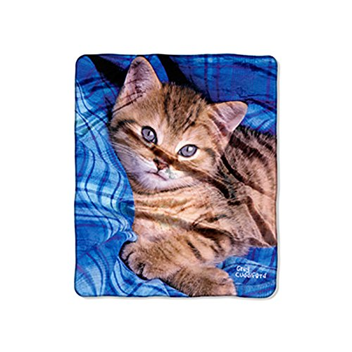 Kittens Fleece Blanket - The Northwest Company Kitten On Blue Double Sided No Sew Throw Kit, Blue, 50 x 60-inches