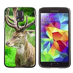 Carcasa Funda Case // Deer V0000105//Samsung Galaxy S5 i9600