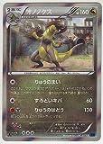 pokemon card XY Booster Part 8 Blue Shock Haxorus 047/059 R XY8 1st Japanese