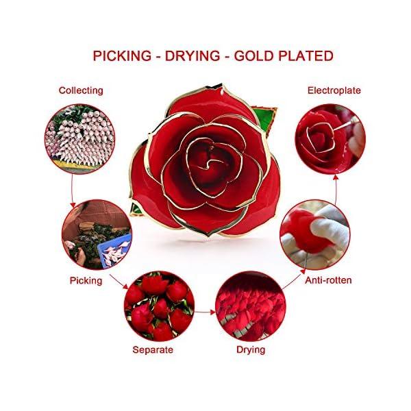 Cozime Rose Plaqué Or 24K, Rose Eternelle Romantique, Rose Dorée Rouge, Fleur Eternelle avec Support, Le Meilleur Cadeau…