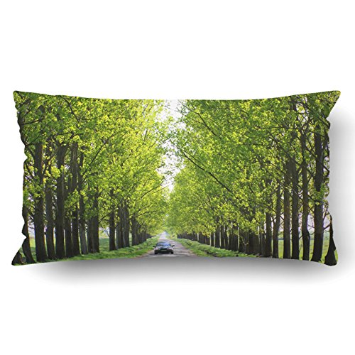Emvency Pillow Covers Decorative Car Driving On An Empty Road Bulk With Zippered 20x36 King Pillow Case For Home Bed Couch Sofa Car One Sided