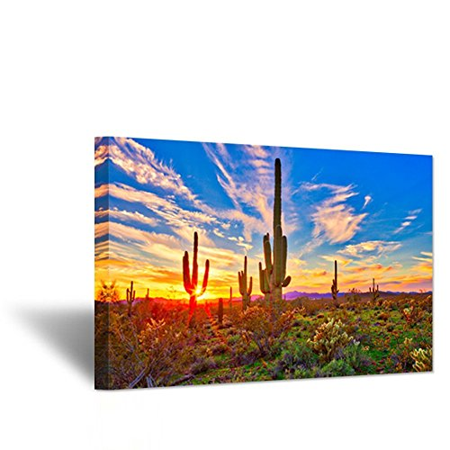 Hello Artwork - Canvas Wall Art Saguaros in Sonoran Desert Over Sunset The Picture North American Nature Landscape Botanical Cactus Print On Canvas for Living Room Decor 24x36inch (Print Art Canvas Deco)