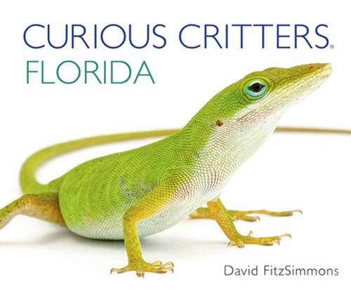 Curious Critters Florida (Curious Critters Board (Curious Critters)