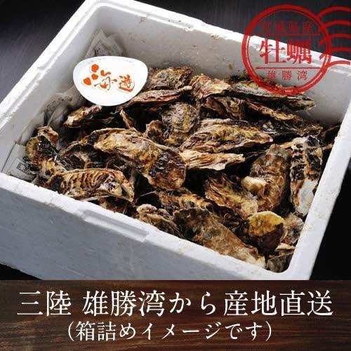 牡蠣 訳あり[規格外]5kg 加熱用 殻付き わけあり無選別 宮城県産 雄勝湾 漁師直送 焼きカキ BBQバーベキュー