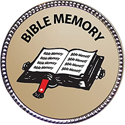 Keepsake Awards Bible Memory - General Award, 1 inch Dia Silver Pin Bible Memory Achievements Collection: Toys & Games