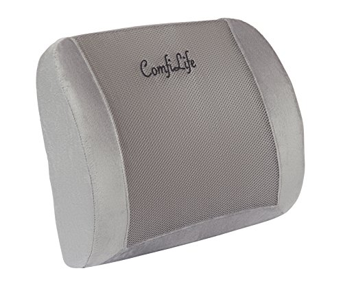 ComfiLife Lumbar Support Back Pillow Office Chair and Car Seat Cushion - Memory Foam with Adjustable Strap and Breathable 3D Mesh (Adjustable Mesh Backrest)