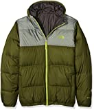 The North Face Kids Boys' Reversible Moondoggy Jacket (Little ), Terrarium Green, LG (14-16 Big Kids)