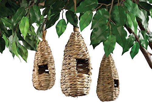 Miles Kimball Bird's Nests - Set Of 3 by Miles Kimball