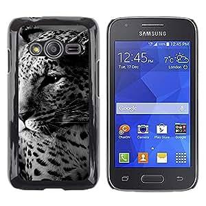 TopCaseStore / la caja del caucho duro de la cubierta de protección de la piel - Leopard Cute Furry Beast Animal Spots - Samsung Galaxy Ace 4 G313 SM-G313F