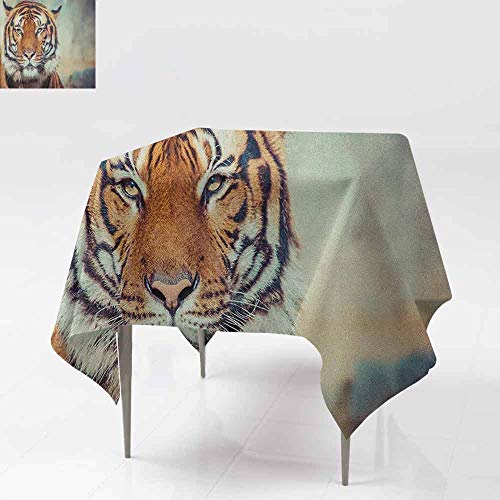 AndyTours Spillproof Tablecloth,Tiger,Large Feline in a Calm State with Blurred Background Close up Image of a Beast,for Events Party Restaurant Dining Table Cover,60x60 Inch Orange Multicolor