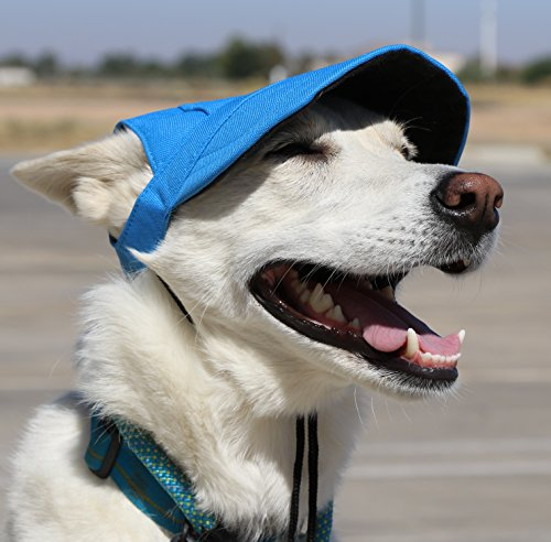 LoveWally Dog Outdoor PET Hat Blue ♦ Adjustable Authentic (Large) by LoveWally (Image #7)