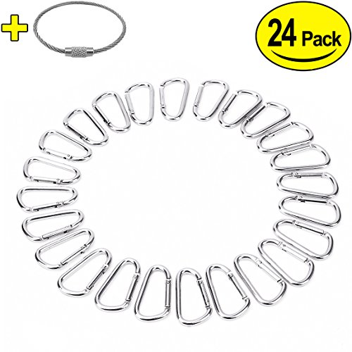 """2"""" Aluminum D Ring Carabiners Clip D Shape Spring Loaded Gate Small Keychain Carabiner Clip Set for Outdoor Camping Mini Lock Snap Hooks Spring Link Key Chain Durable Improved 24 PCS (Silver)"""