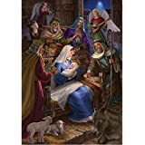 Holy Nativity - Standard Size House Flag, 28 Inch X 40 Inch