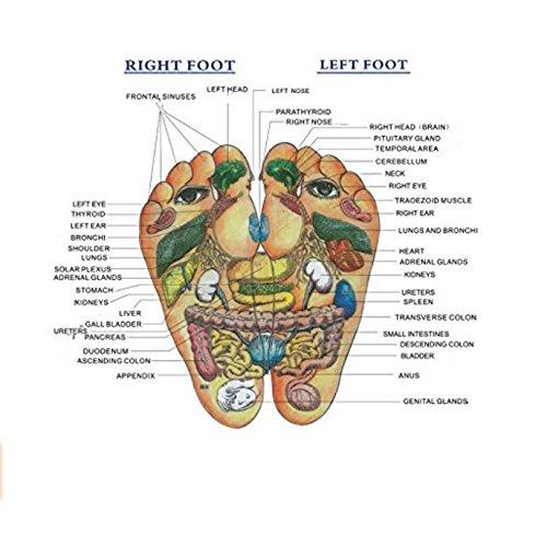 mhgao Lady Zapatillas de masaje natural Pebble masaje pie punto salud Zapatillas de casa rojo